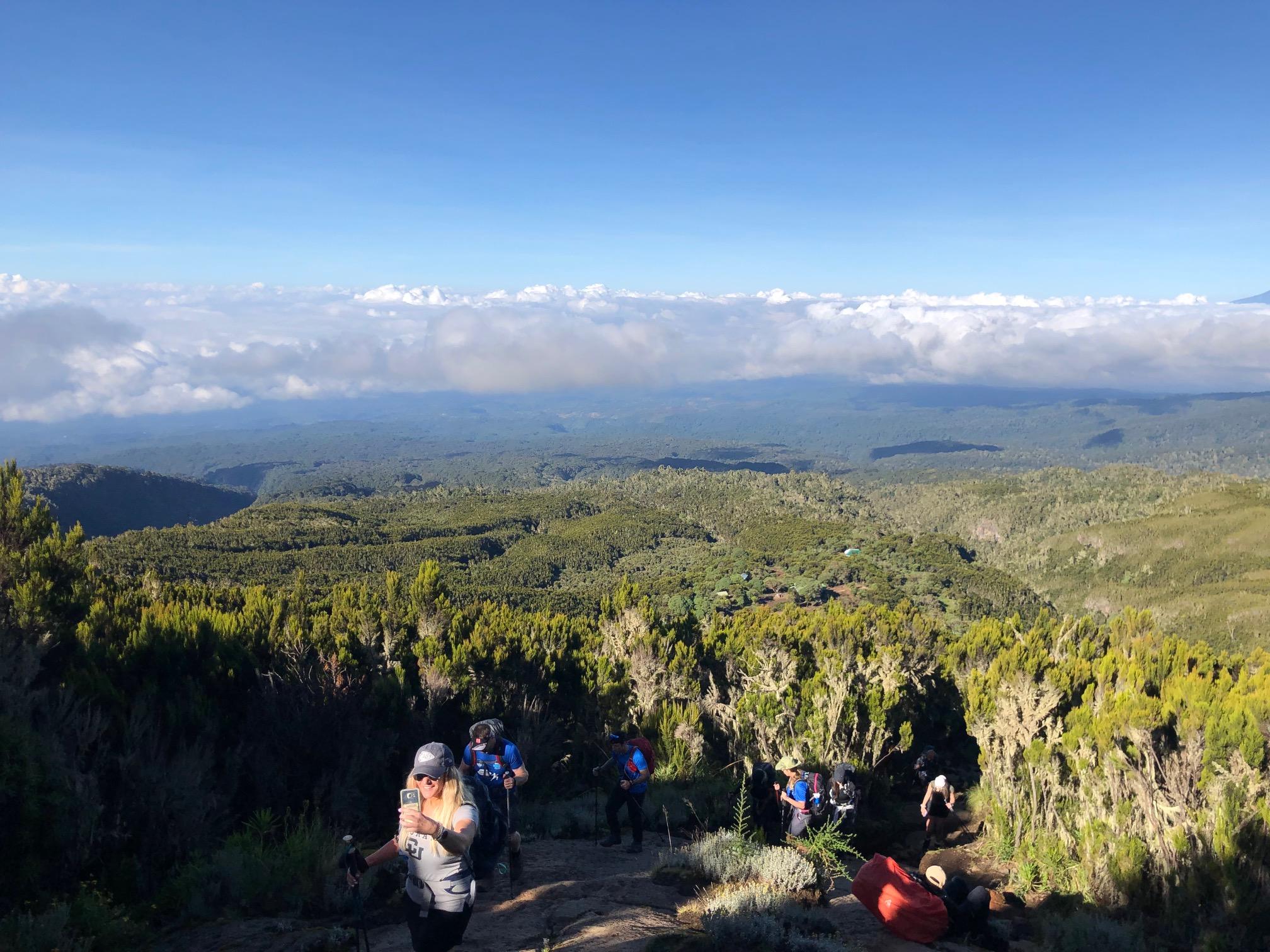 view Kilimanjaro Brian Stokes