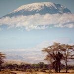 cajuda-kilimanjaro-tanzania-ITCS